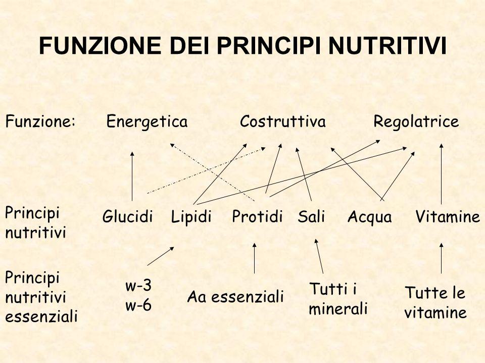 FUNZIONE DEI PRINCIPI NUTRITIVI Funzione:EnergeticaCostruttivaRegolatrice Glucidi Principi nutritivi LipidiProtidiVitamineSaliAcqua Principi nutritivi