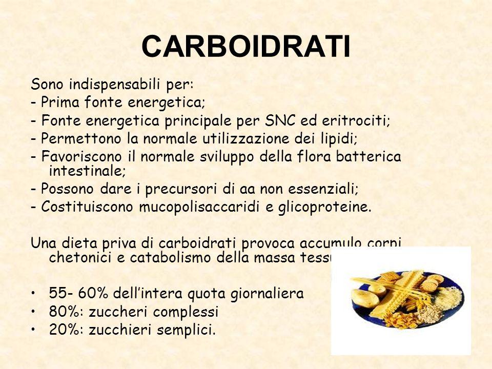 CARBOIDRATI Sono indispensabili per: - Prima fonte energetica; - Fonte energetica principale per SNC ed eritrociti; - Permettono la normale utilizzazi