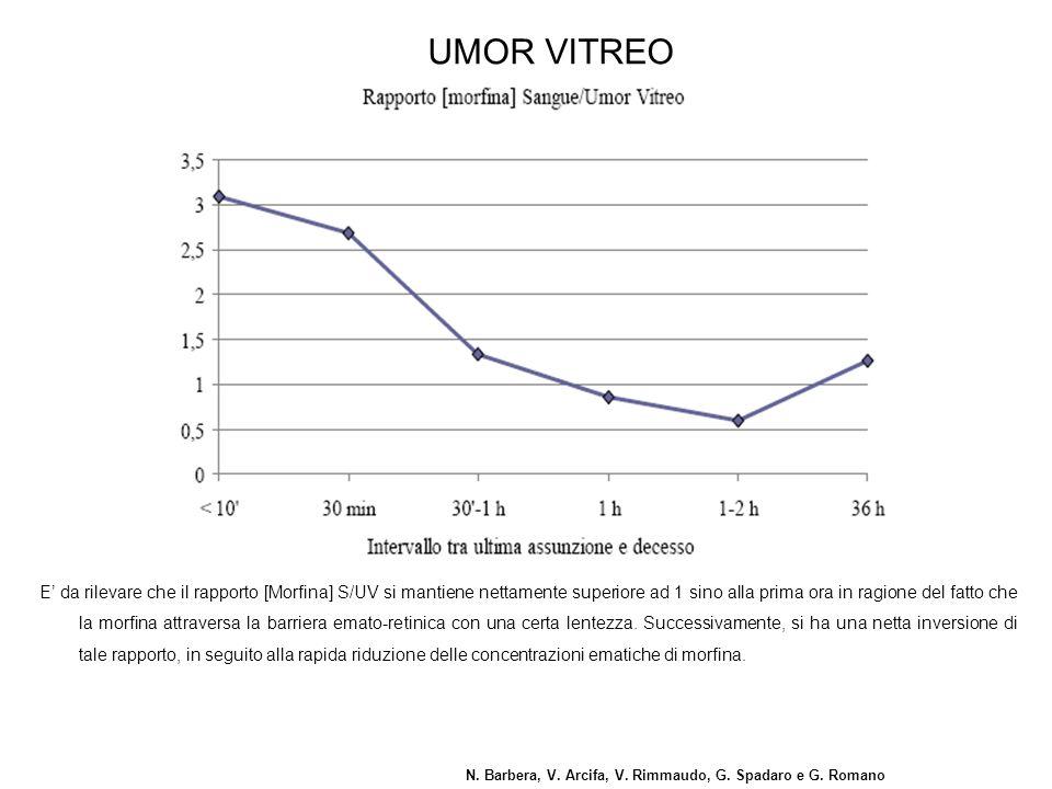 N. Barbera, V. Arcifa, V. Rimmaudo, G. Spadaro e G. Romano UMOR VITREO E' da rilevare che il rapporto [Morfina] S/UV si mantiene nettamente superiore