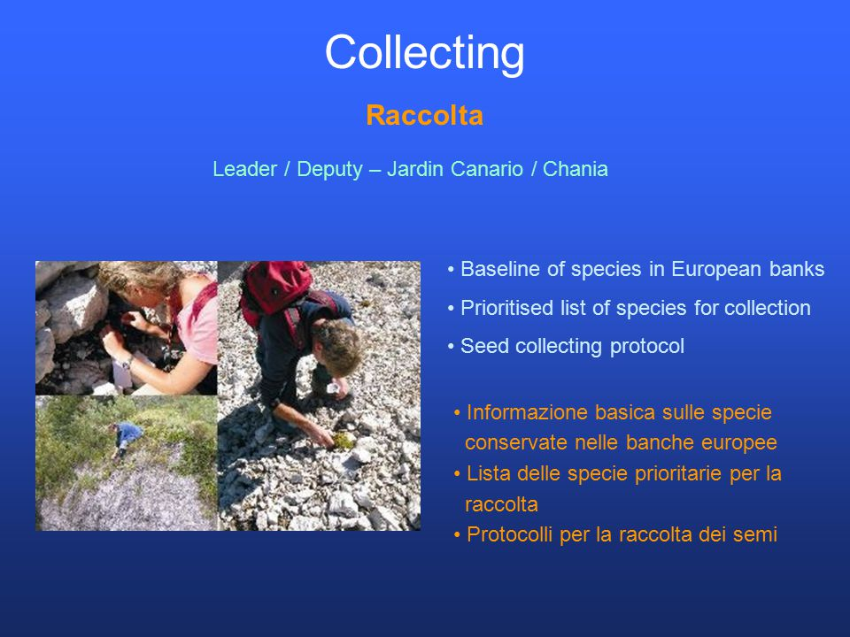 Collecting Raccolta Baseline of species in European banks Prioritised list of species for collection Seed collecting protocol Leader / Deputy – Jardin Canario / Chania Informazione basica sulle specie conservate nelle banche europee Lista delle specie prioritarie per la raccolta Protocolli per la raccolta dei semi