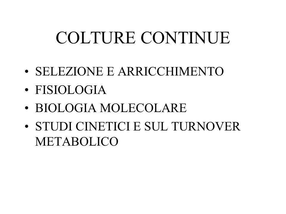 COLTURE CONTINUE SELEZIONE E ARRICCHIMENTO FISIOLOGIA BIOLOGIA MOLECOLARE STUDI CINETICI E SUL TURNOVER METABOLICO