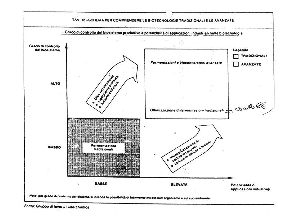 INNOVAZIONE NEI PROCESSI FERMENTATIVI SUBSTRATO ORGANISMO IMPIANTO MODULAZIONE FISIOLOGICA DELL'ORGANISMO