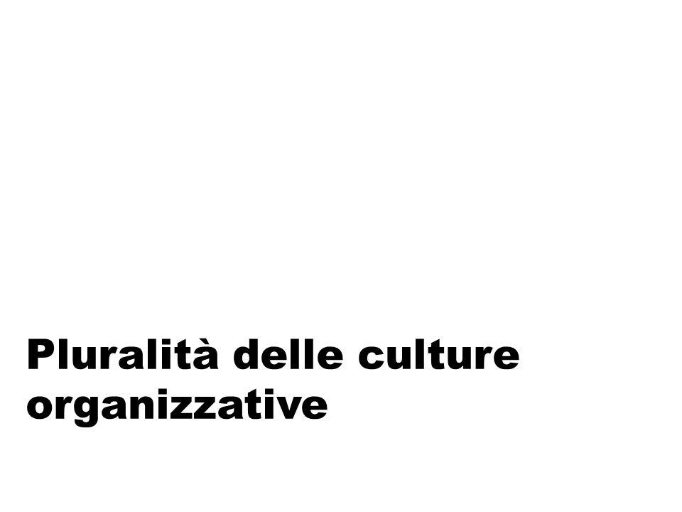 Oggetto delle sue ricerche Vuole esaminare soprattutto come la cultura viene trasmessa ai dipendenti, per quali ragioni, come questi reagiscono