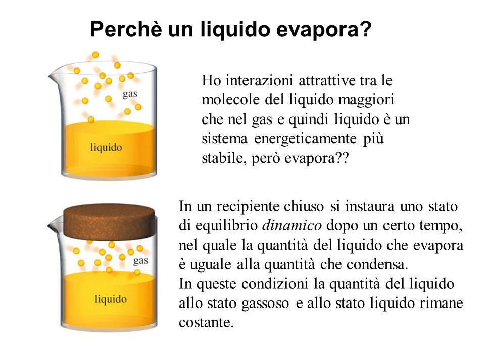 Perchè un liquido evapora? Ho interazioni attrattive tra le molecole del liquido maggiori che nel gas e quindi liquido è un sistema energeticamente pi