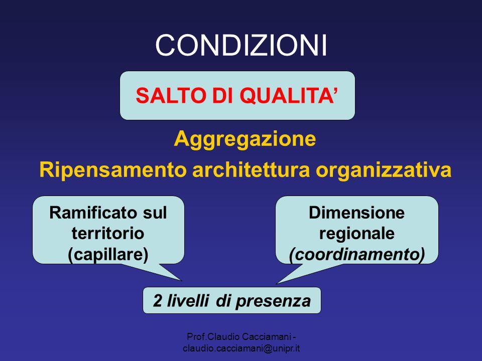 Prof.Claudio Cacciamani - claudio.cacciamani@unipr.it CONDIZIONI Aggregazione Ripensamento architettura organizzativa SALTO DI QUALITA' Ramificato sul