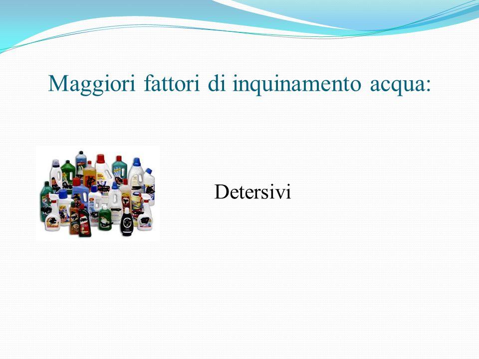 Maggiori fattori di inquinamento acqua: Detersivi
