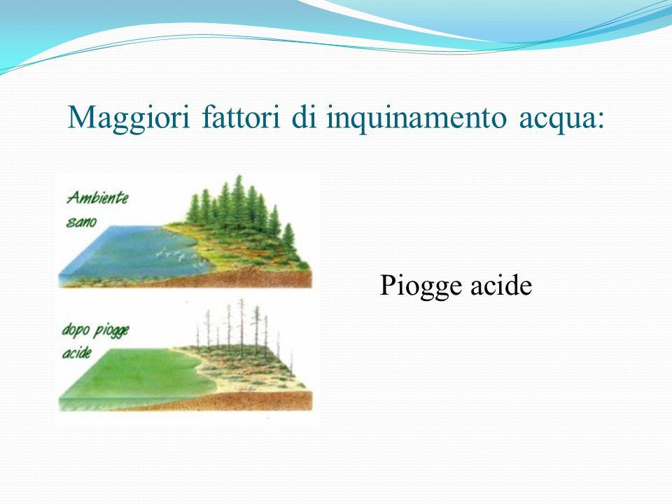 Maggiori fattori di inquinamento acqua: Piogge acide