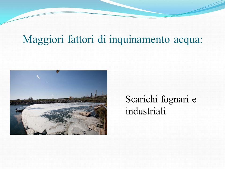 Maggiori fattori di inquinamento acqua: Scarichi fognari e industriali