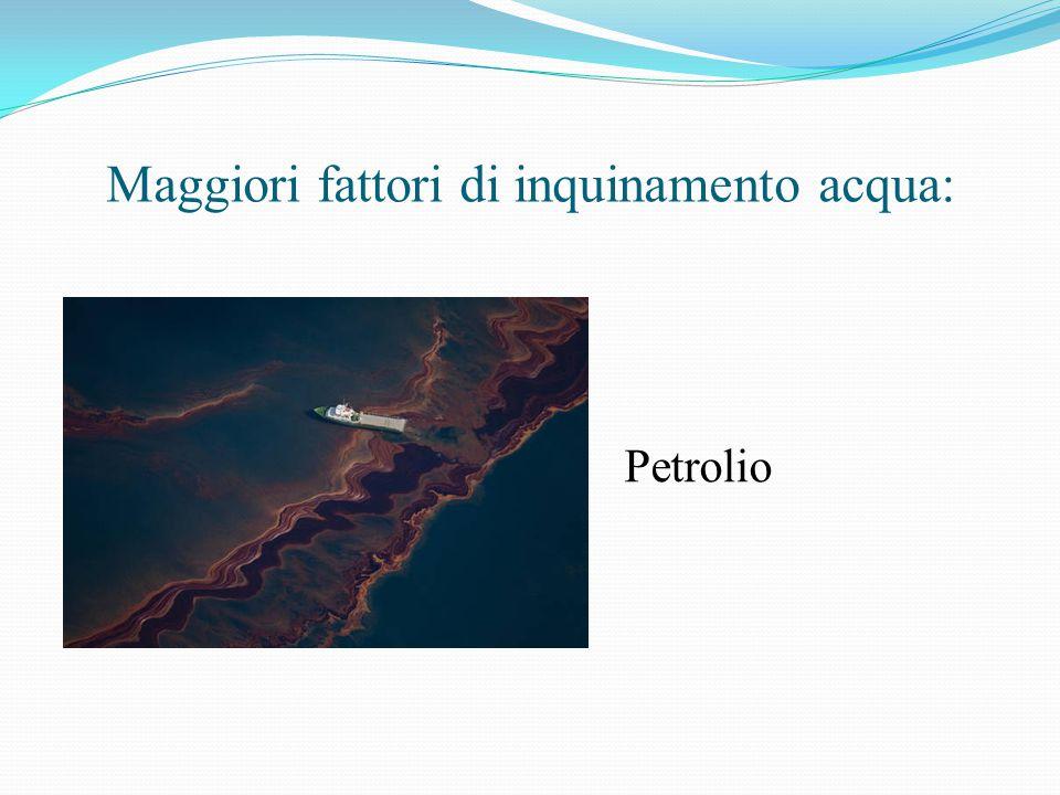 Maggiori fattori di inquinamento acqua: Petrolio