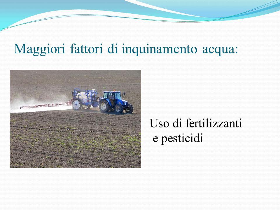Maggiori fattori di inquinamento acqua: Uso di fertilizzanti e pesticidi