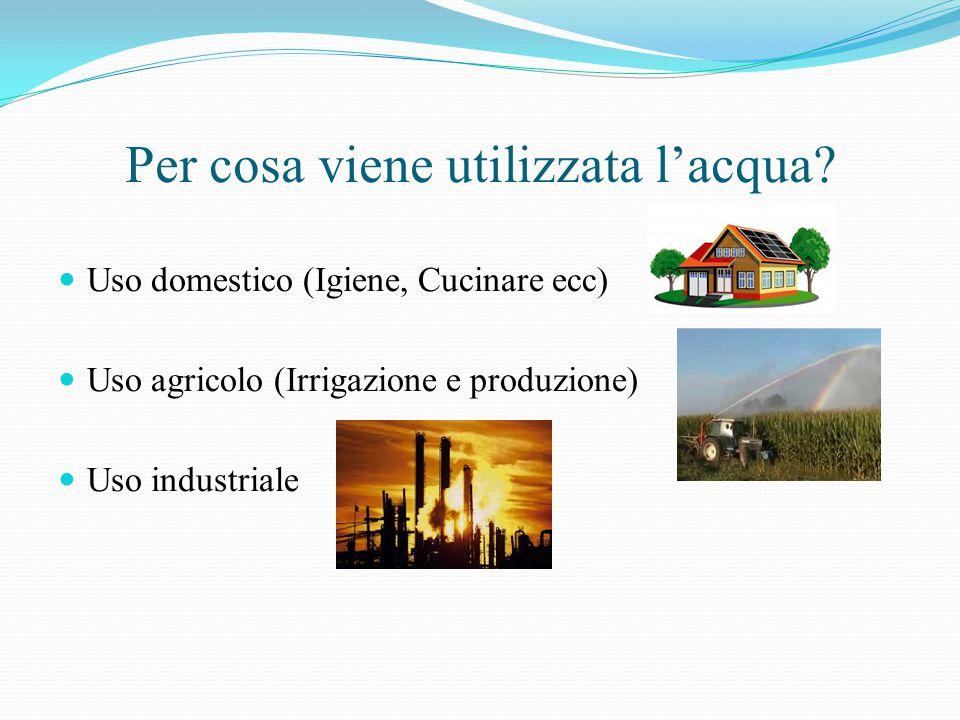 Per cosa viene utilizzata l'acqua? Uso domestico (Igiene, Cucinare ecc) Uso agricolo (Irrigazione e produzione) Uso industriale