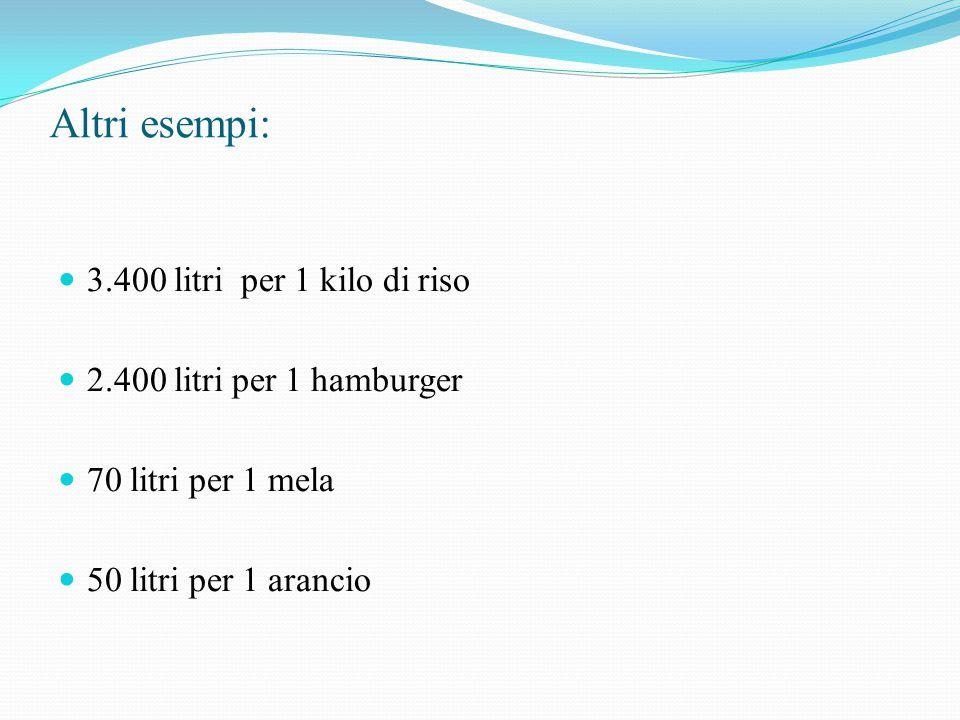 Altri esempi: 3.400 litri per 1 kilo di riso 2.400 litri per 1 hamburger 70 litri per 1 mela 50 litri per 1 arancio