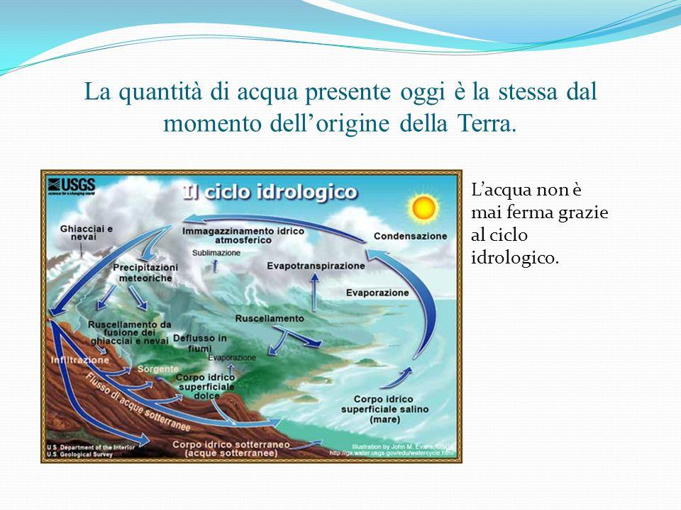 La quantità di acqua presente oggi è la stessa dal momento dell'origine della Terra. L'acqua non è mai ferma grazie al ciclo idrologico.