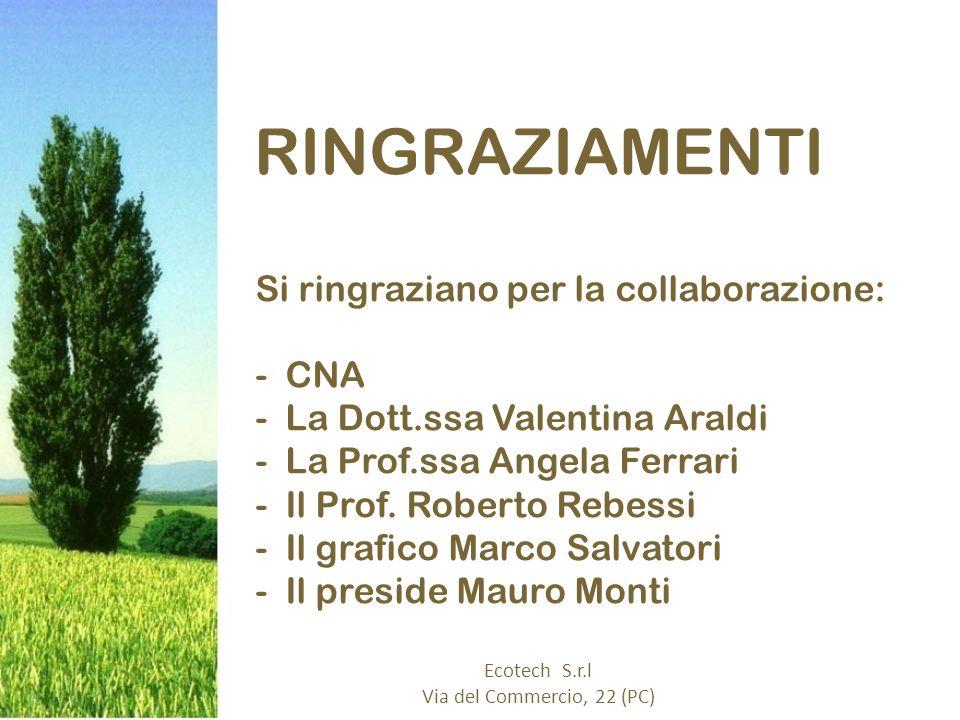 RINGRAZIAMENTI Si ringraziano per la collaborazione: -CNA -La Dott.ssa Valentina Araldi -La Prof.ssa Angela Ferrari -Il Prof.
