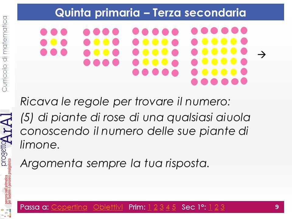 Ricava le regole per trovare il numero: (5) di piante di rose di una qualsiasi aiuola conoscendo il numero delle sue piante di limone.