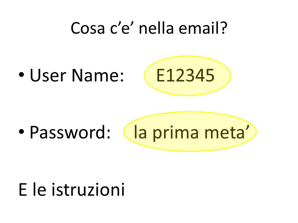 Cosa c'e' nella email? User Name: E12345 Password: la prima meta' E le istruzioni