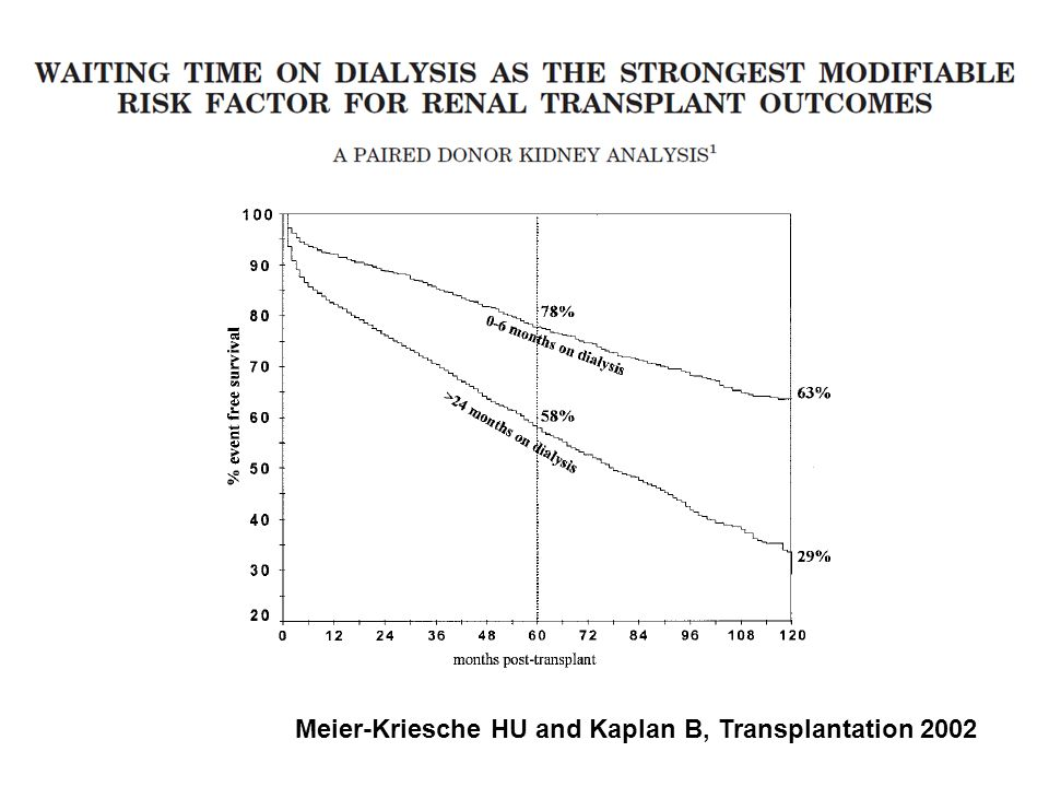 Graft survival as determined by dialysis time over 10 yr.