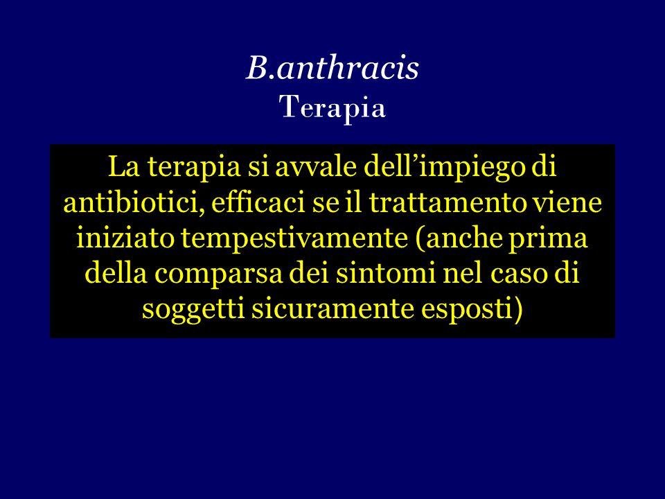 B.anthracis Terapia La terapia si avvale dell'impiego di antibiotici, efficaci se il trattamento viene iniziato tempestivamente (anche prima della comparsa dei sintomi nel caso di soggetti sicuramente esposti )