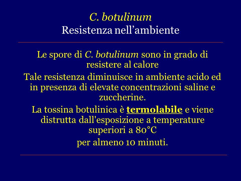 C.botulinum Resistenza nell'ambiente Le spore di C.