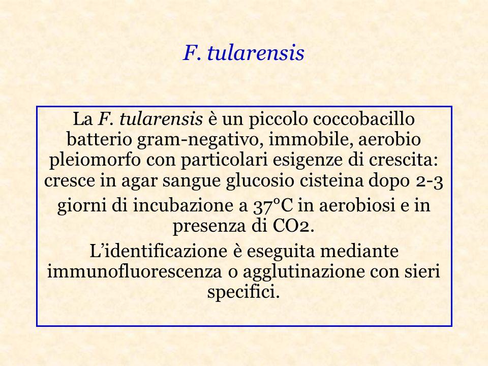F.tularensis La F.
