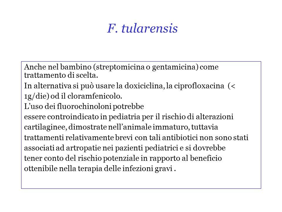F.tularensis Anche nel bambino (streptomicina o gentamicina) come trattamento di scelta.