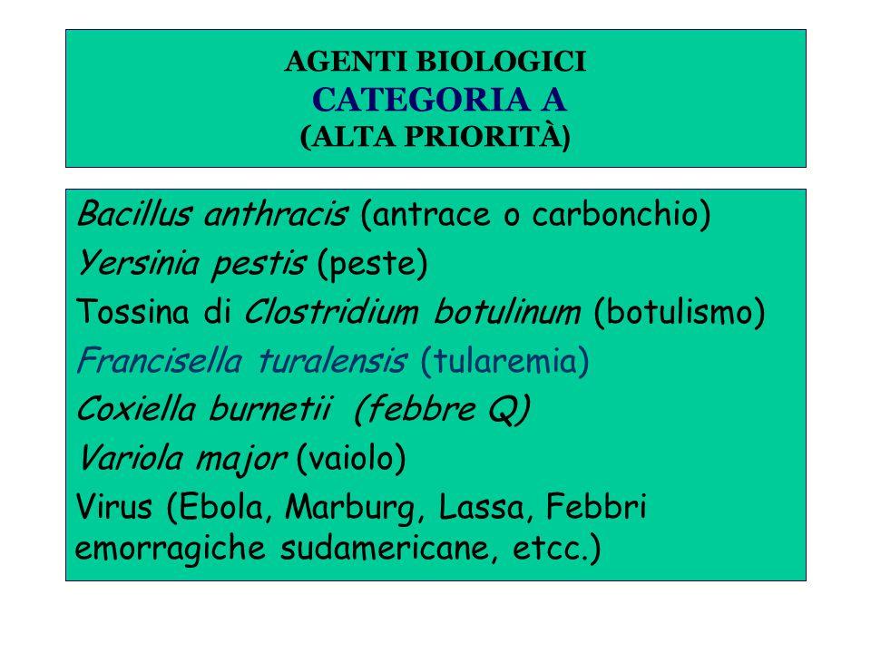 AGENTI BIOLOGICI CATEGORIA A (ALTA PRIORITÀ ) Bacillus anthracis (antrace o carbonchio) Yersinia pestis (peste) Tossina di Clostridium botulinum (botulismo) Francisella turalensis (tularemia) Coxiella burnetii (febbre Q) Variola major (vaiolo) Virus (Ebola, Marburg, Lassa, Febbri emorragiche sudamericane, etcc.)