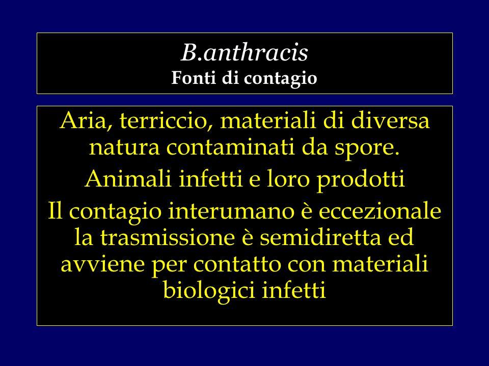 B.anthracis Fonti di contagio Aria, terriccio, materiali di diversa natura contaminati da spore.