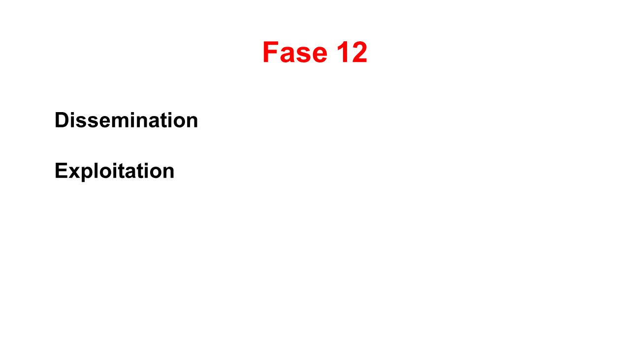 Fase 12 Dissemination Exploitation