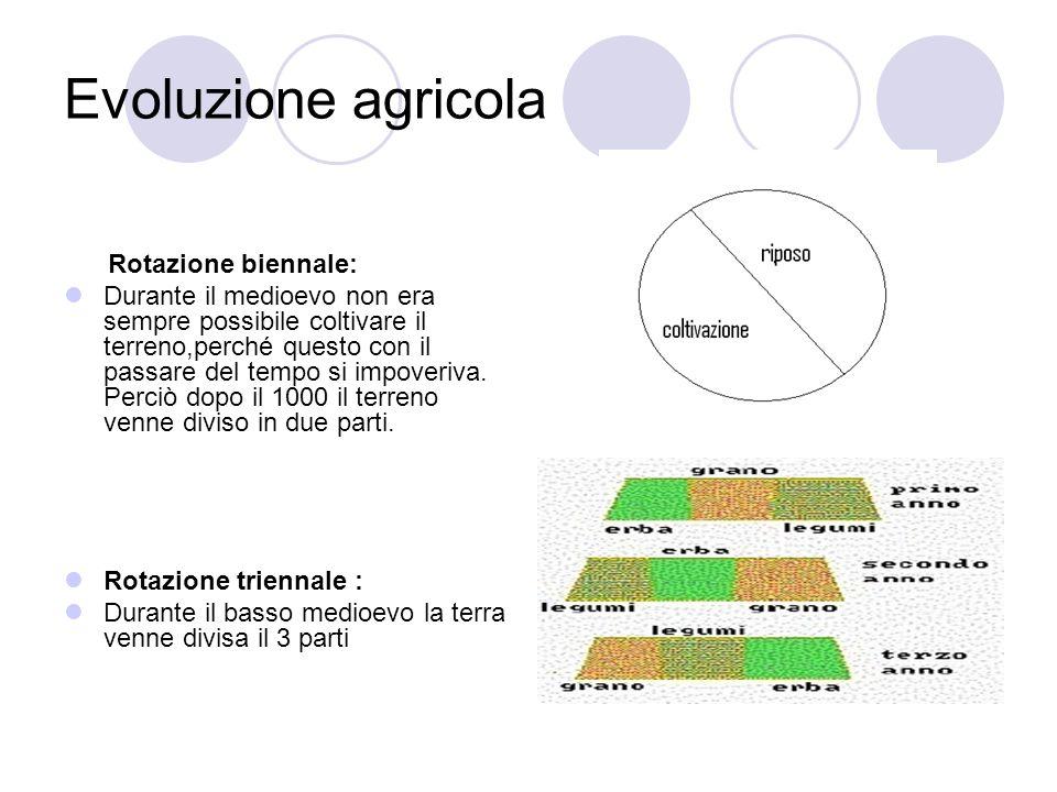 Evoluzione agricola Rotazione biennale: Durante il medioevo non era sempre possibile coltivare il terreno,perché questo con il passare del tempo si im
