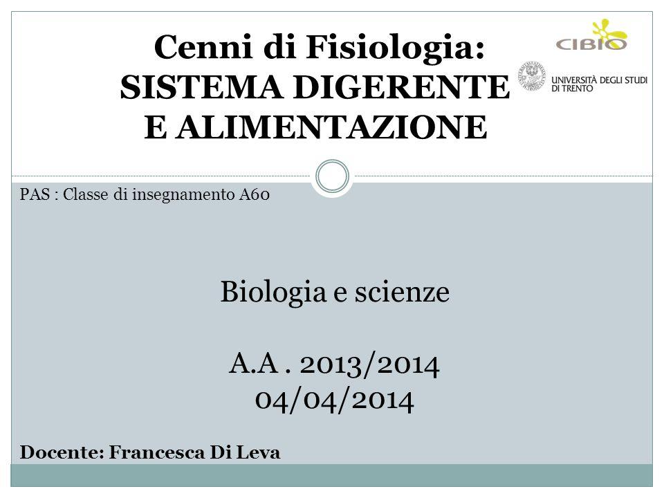 PAS : Classe di insegnamento A60 Biologia e scienze A.A. 2013/2014 04/04/2014 Docente: Francesca Di Leva Cenni di Fisiologia: SISTEMA DIGERENTE E ALIM