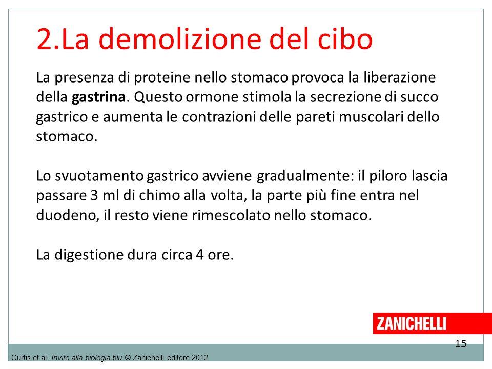 15 Curtis et al. Invito alla biologia.blu © Zanichelli editore 2012 2.La demolizione del cibo La presenza di proteine nello stomaco provoca la liberaz