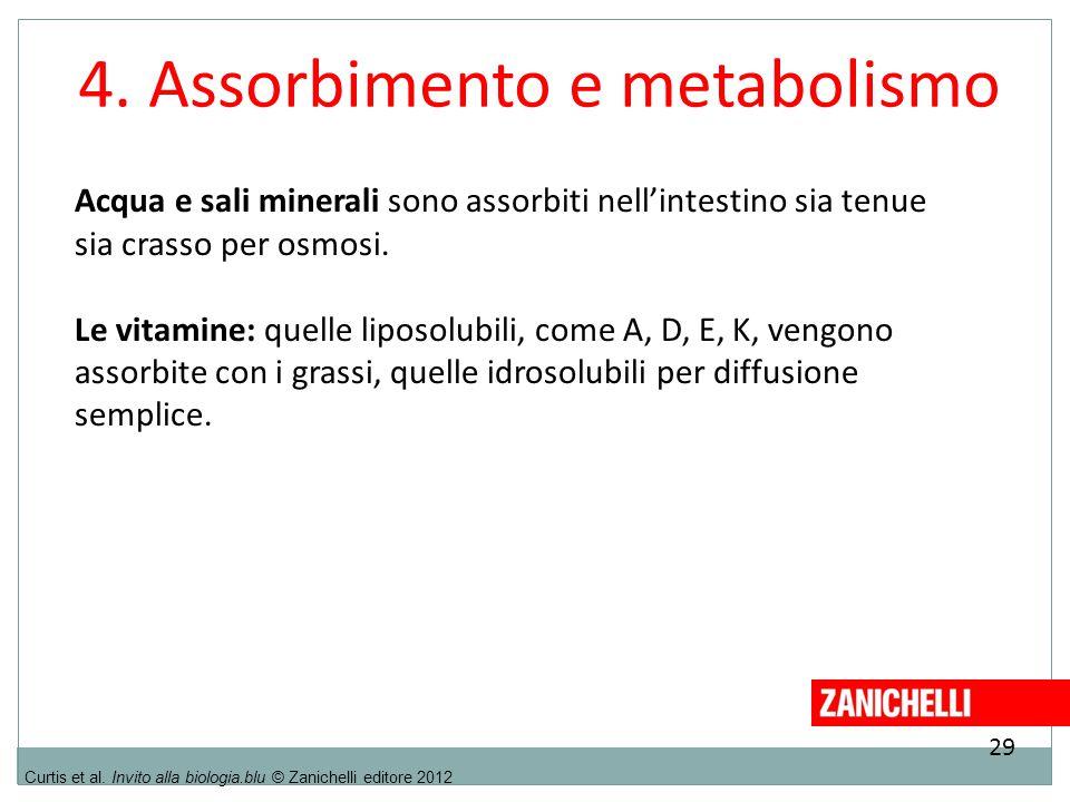 29 Curtis et al. Invito alla biologia.blu © Zanichelli editore 2012 4. Assorbimento e metabolismo Acqua e sali minerali sono assorbiti nell'intestino