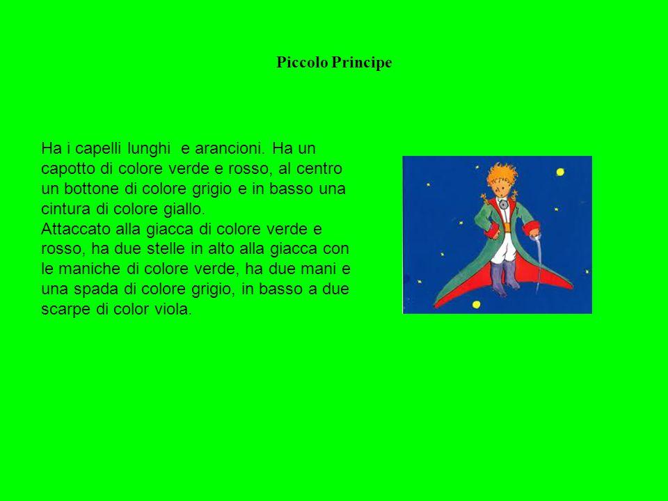 Piccolo Principe Ha i capelli lunghi e arancioni. Ha un capotto di colore verde e rosso, al centro un bottone di colore grigio e in basso una cintura