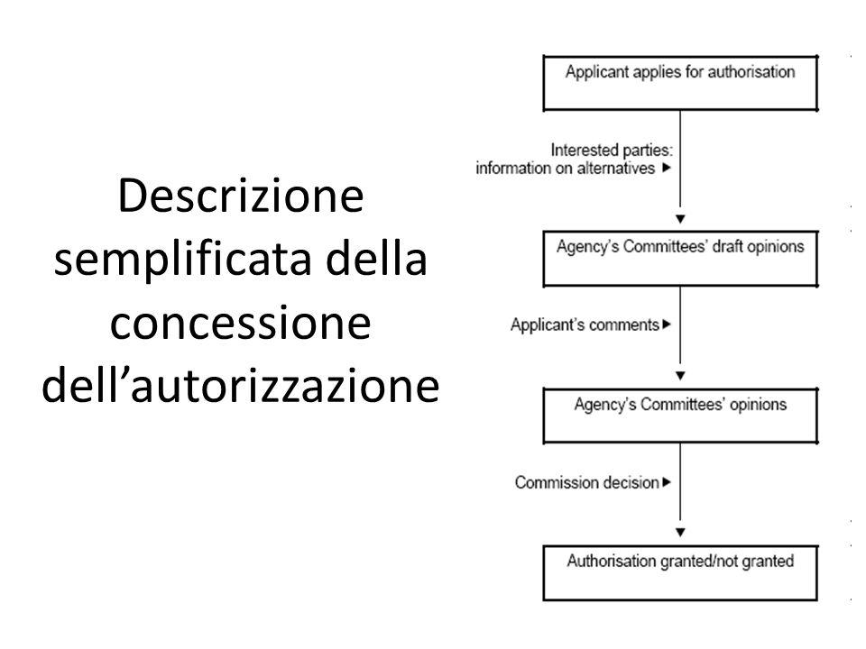 Descrizione semplificata della concessione dell'autorizzazione
