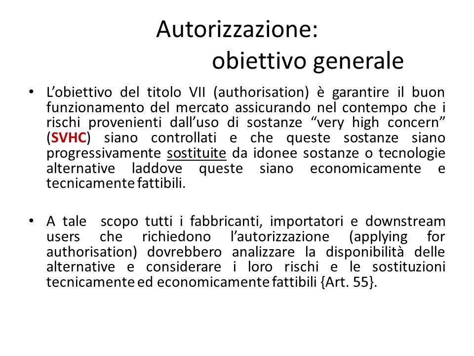 Autorizzazione: obiettivo generale L'obiettivo del titolo VII (authorisation) è garantire il buon funzionamento del mercato assicurando nel contempo c