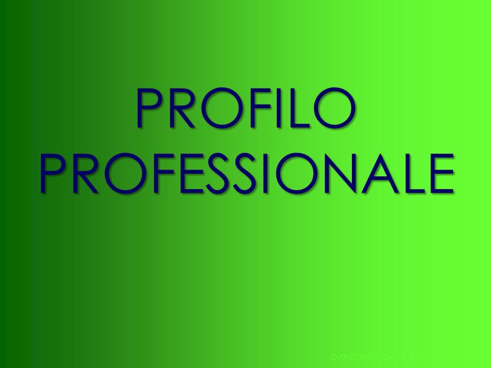 piercarlo.gaia @ ti.ch 11 PROFILO PROFESSIONALE