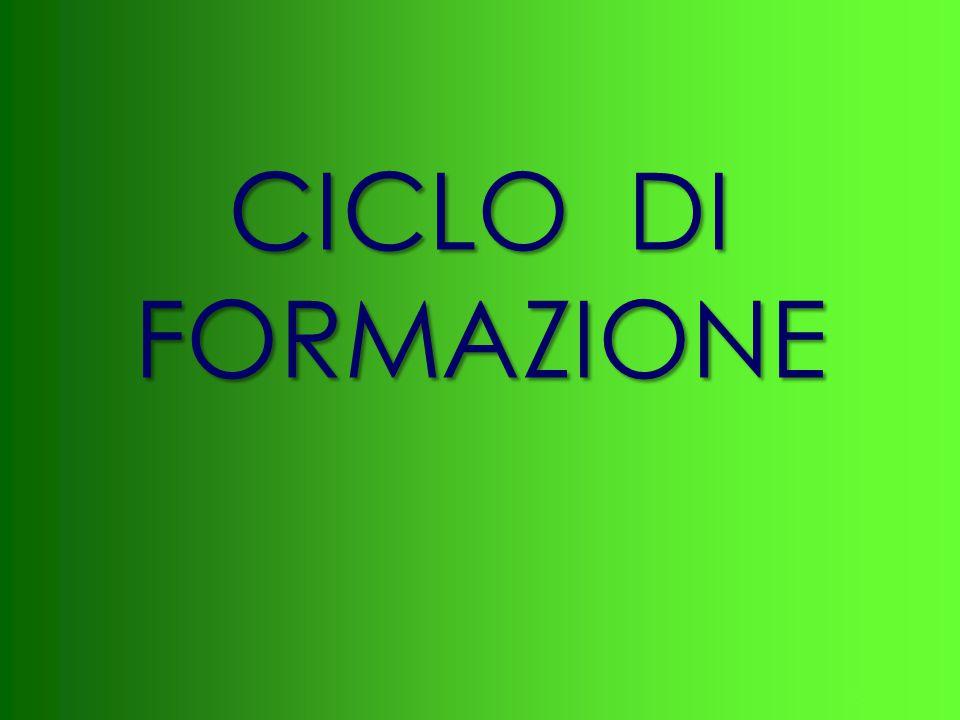 33 CICLO DI FORMAZIONE