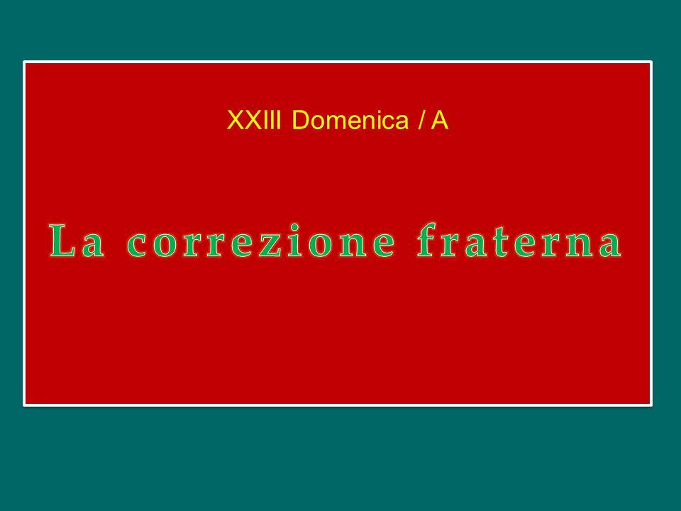 XXIII Domenica / A