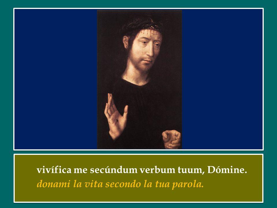 vivífica me secúndum verbum tuum, Dómine.donami la vita secondo la tua parola.