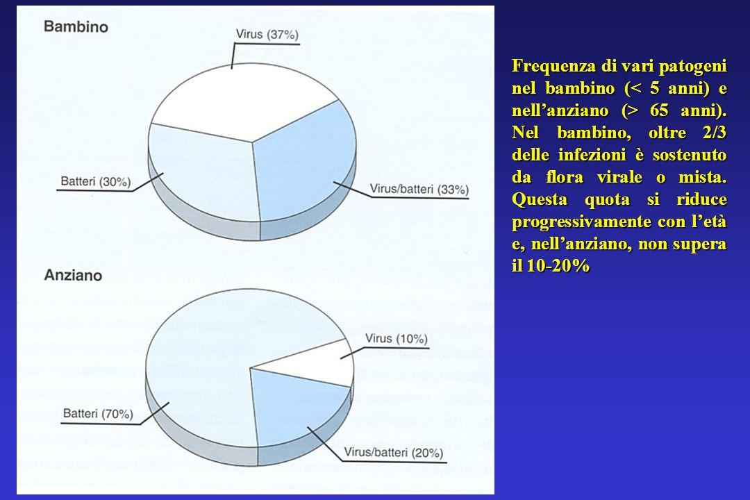 Frequenza di vari patogeni nel bambino ( 65 anni).