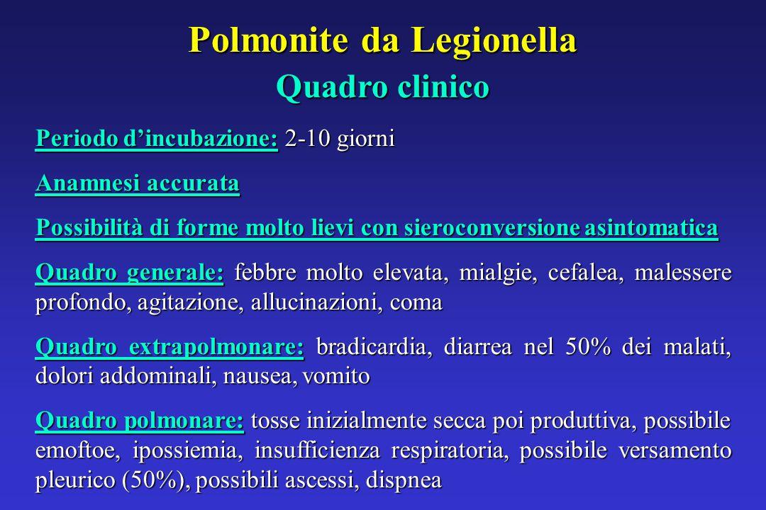 Polmonite da Legionella Periodo d'incubazione: 2-10 giorni Anamnesi accurata Possibilità di forme molto lievi con sieroconversione asintomatica Quadro generale: febbre molto elevata, mialgie, cefalea, malessere profondo, agitazione, allucinazioni, coma Quadro extrapolmonare: bradicardia, diarrea nel 50% dei malati, dolori addominali, nausea, vomito Quadro polmonare: tosse inizialmente secca poi produttiva, possibile emoftoe, ipossiemia, insufficienza respiratoria, possibile versamento pleurico (50%), possibili ascessi, dispnea Quadro clinico