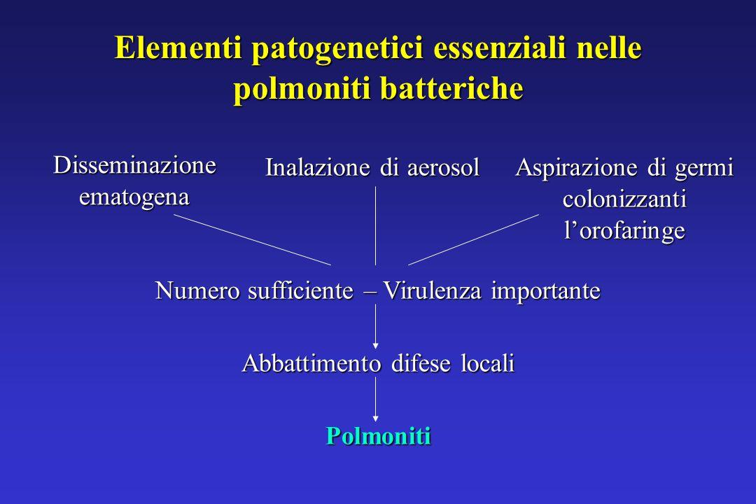 Elementi patogenetici essenziali nelle polmoniti batteriche Disseminazione ematogena Inalazione di aerosol Aspirazione di germi colonizzanti l'orofaringe Numero sufficiente – Virulenza importante Abbattimento difese locali Polmoniti