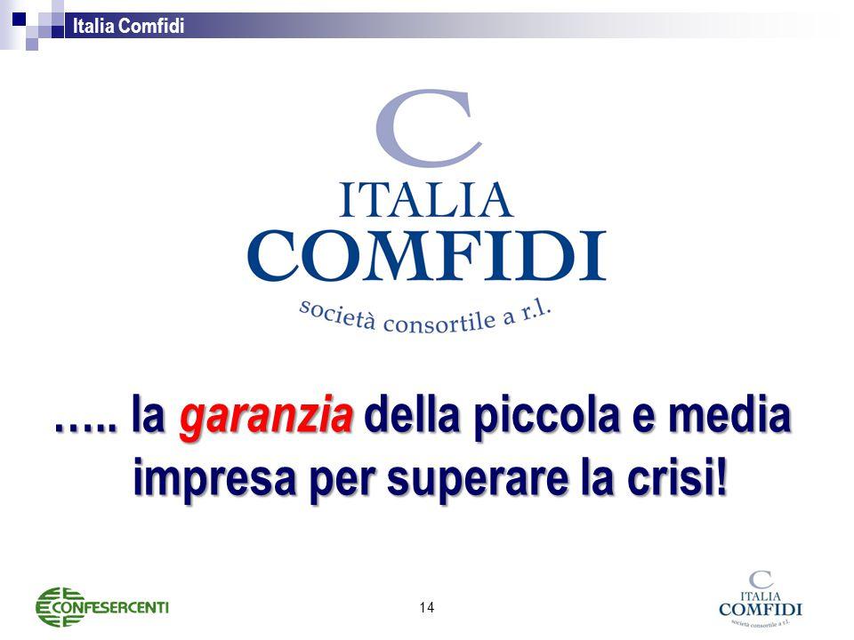 Italia Comfidi ….. la garanzia della piccola e media impresa per superare la crisi! 14