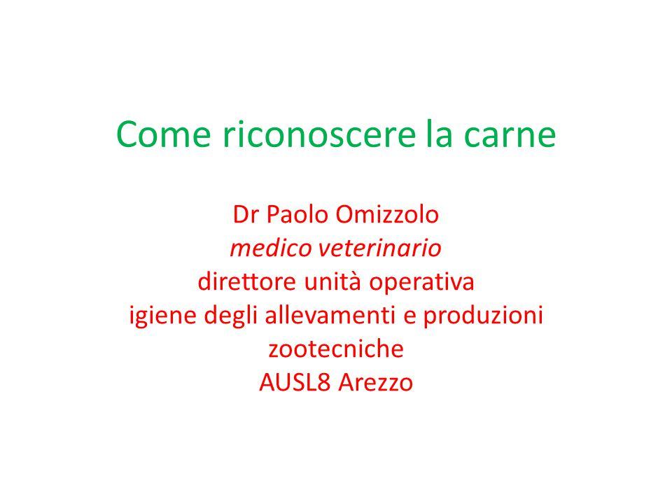 Come riconoscere la carne Dr Paolo Omizzolo medico veterinario direttore unità operativa igiene degli allevamenti e produzioni zootecniche AUSL8 Arezz