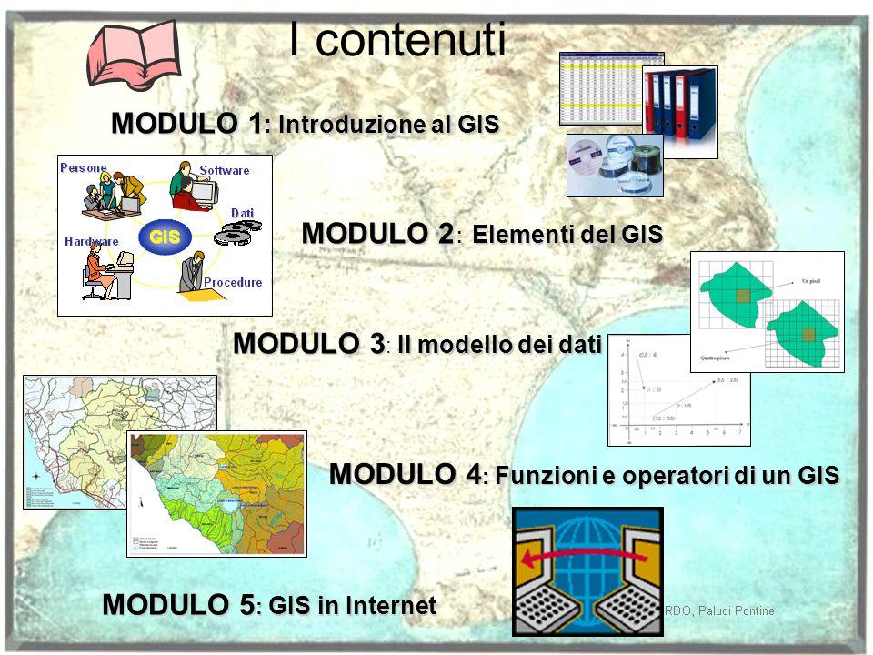 I contenuti MODULO 1 : Introduzione al GIS MODULO 2 Elementi del GIS MODULO 2 : Elementi del GIS MODULO 3 Il modello dei dati MODULO 3 : Il modello dei dati MODULO 4 : Funzioni e operatori di un GIS MODULO 5 : GIS in Internet