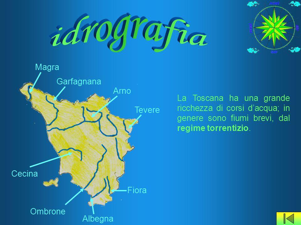 La Toscana ha una grande ricchezza di corsi d'acqua; in genere sono fiumi brevi, dal regime torrentizio. Arno Magra Garfagnana Tevere Cecina Ombrone F