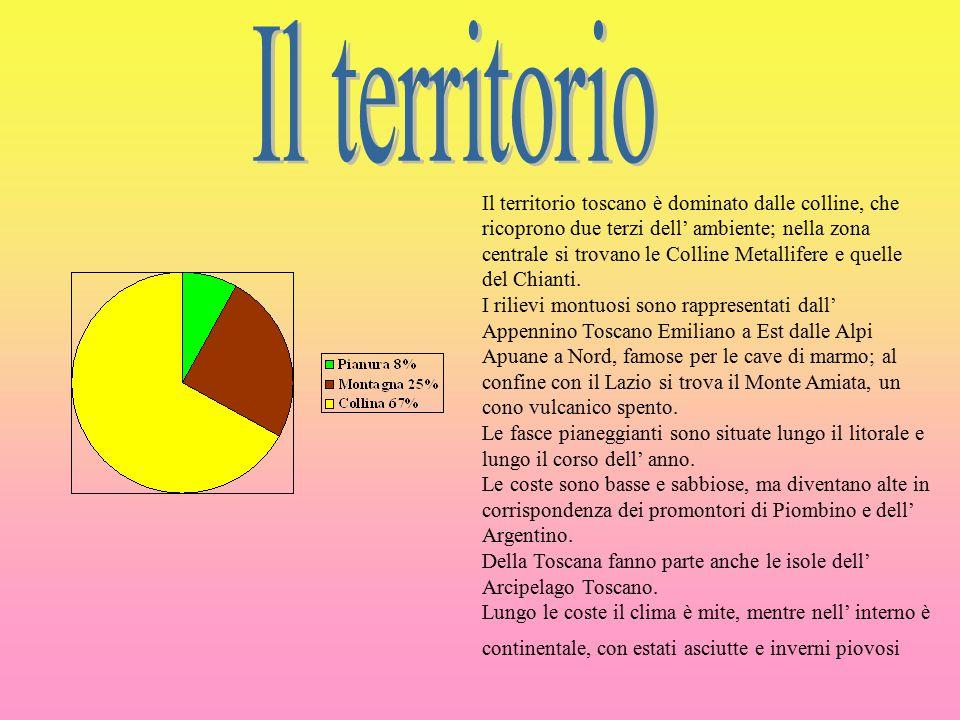 Il territorio toscano è dominato dalle colline, che ricoprono due terzi dell' ambiente; nella zona centrale si trovano le Colline Metallifere e quelle del Chianti.