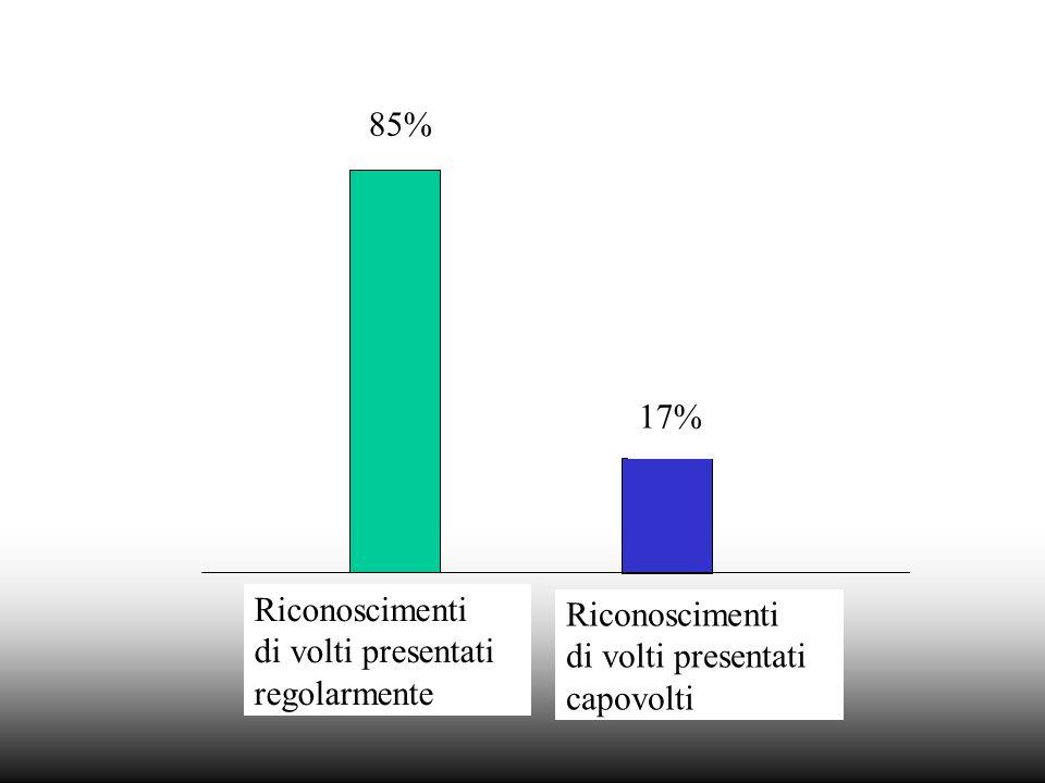 85% 17% Riconoscimenti di volti presentati regolarmente Riconoscimenti di volti presentati capovolti