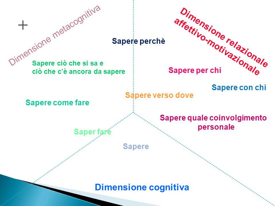 Dimensione cognitiva Dimensione relazionale affettivo-motivazionale Dimensione metacognitiva Sapere Saper fare Sapere come fare Sapere perchè Sapere v