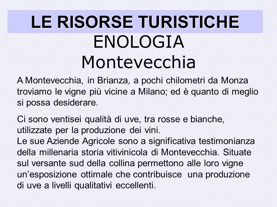 LE RISORSE TURISTICHE ENOLOGIA Montevecchia A Montevecchia, in Brianza, a pochi chilometri da Monza troviamo le vigne più vicine a Milano; ed è quanto